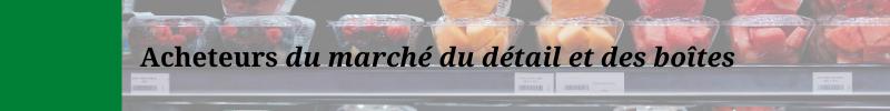 Bandeaux - site web (5)
